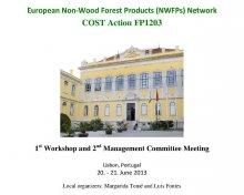 foto-NWFPs-workshop&meeting