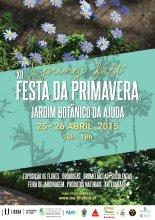 Cartaz XII Festa da Primavera