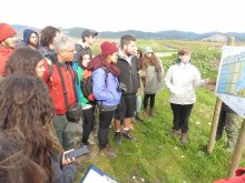 Visit to constructed wetland for water quality improvement