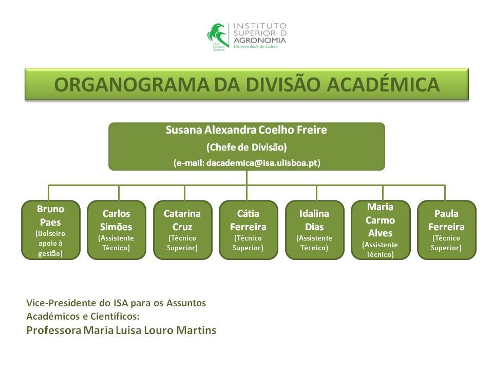 Organograma Divisão Académica